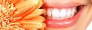 Smile Station Dental Clinic Bangalore