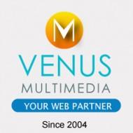 Venus Multimedia, Web Services Company